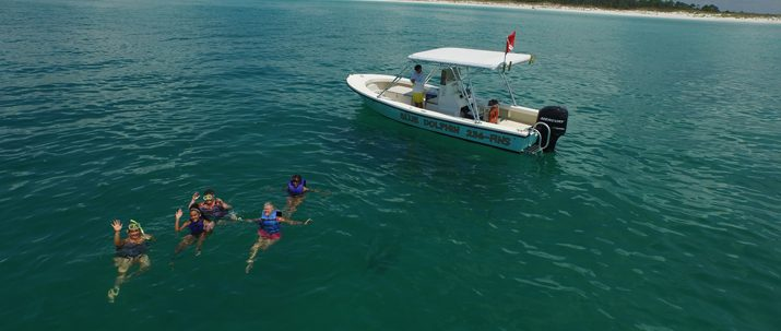 http://shellislandtours.com/wp-content/uploads/2016/07/Blue-Dolphin-Tour-10-5-715x303.jpg